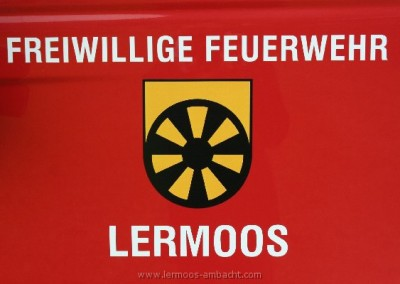 Lermoos2010 (106)